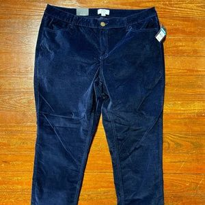 Crown & Ivy Women's casual pants Size 16 NWT
